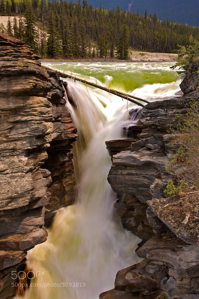 Photograph Athabasca Falls by Buck Shreck on 500px