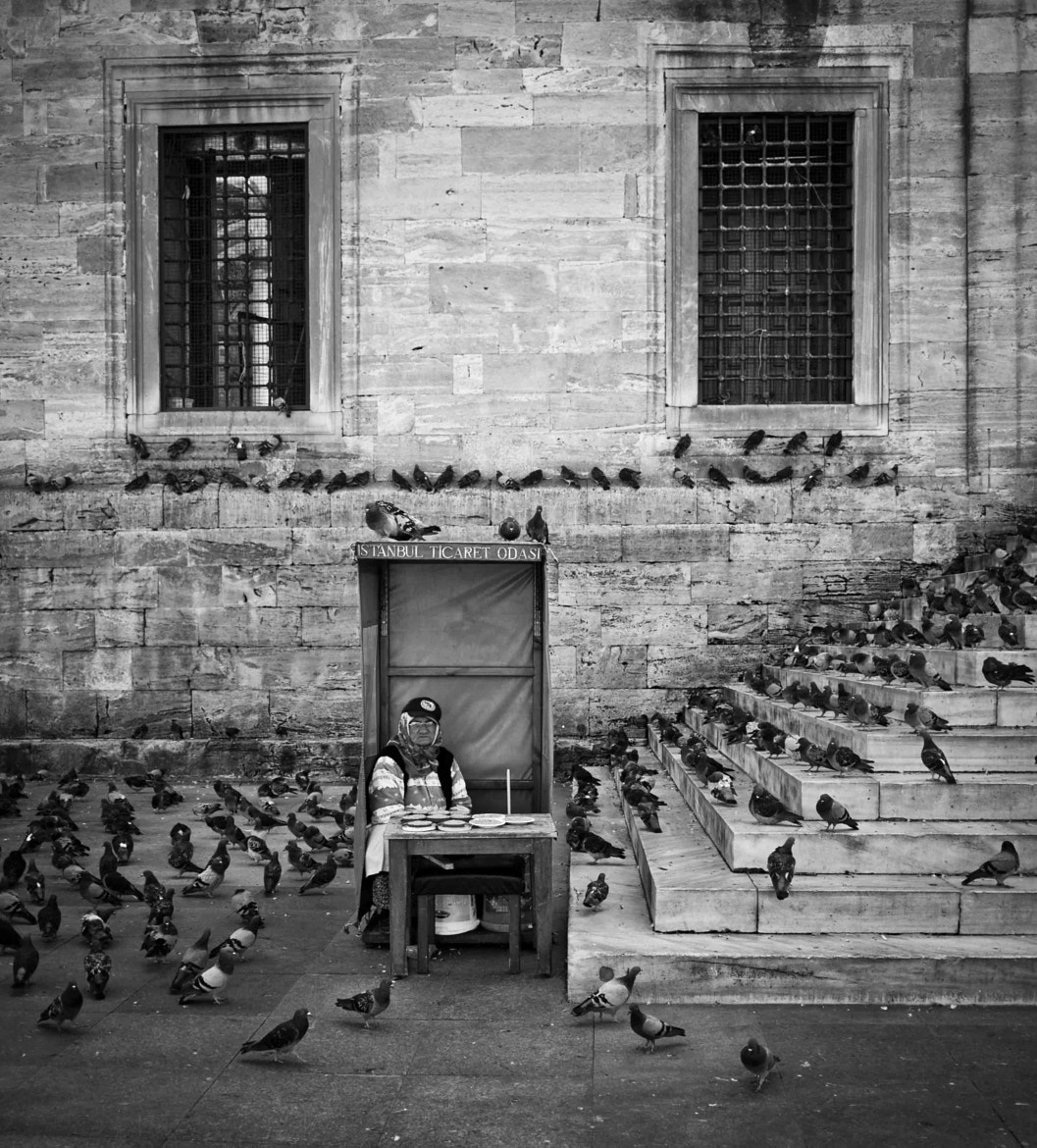 Photograph pigeon feeders // sultanahmet, istanbul by Pamela Ross on 500px