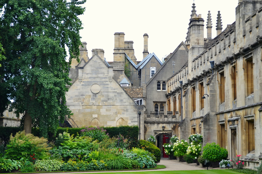 Magdalen College Oxford by Sandra  on 500px.com