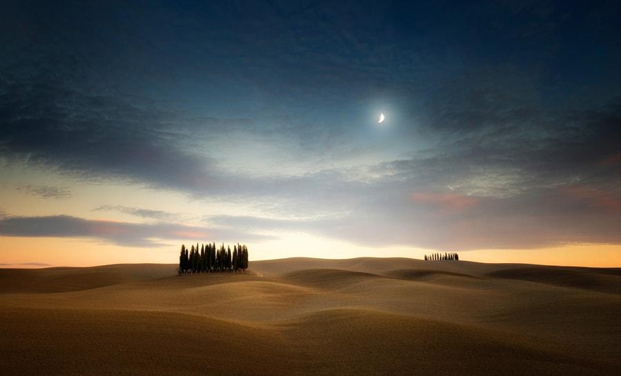 Moon Over Wavy Field by Carsten Meyerdierks