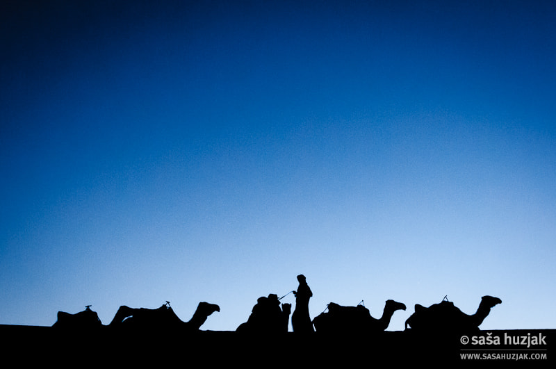 Photograph Putting the camels to sleep by Saša Huzjak on 500px