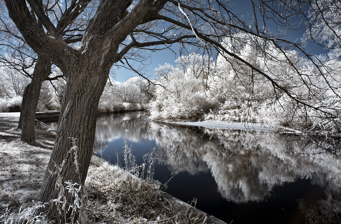 Photograph Long Pond by Frank Lemire on 500px