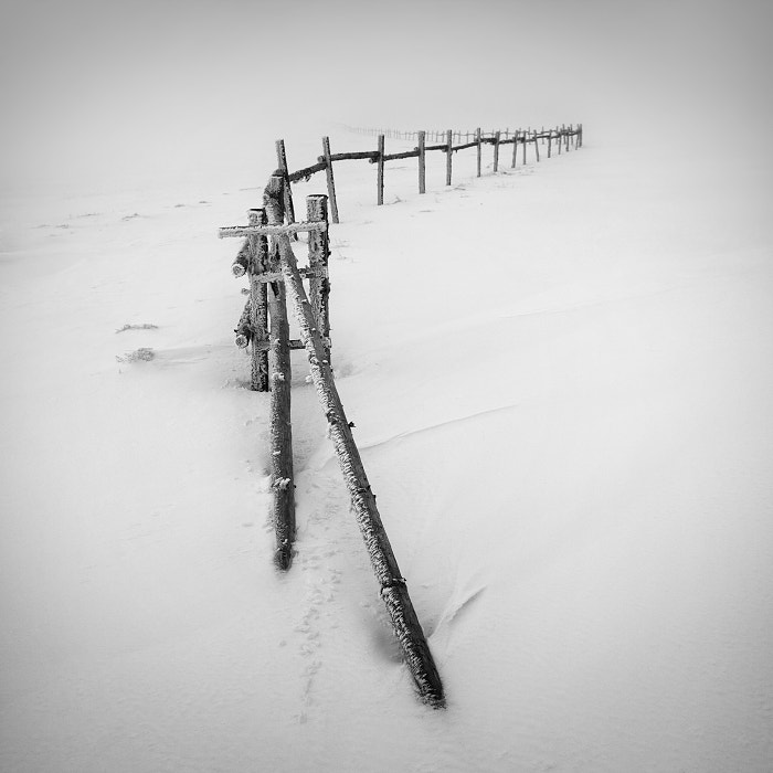 Photograph Winter in the Ore mountains IV by Daniel Řeřicha on 500px