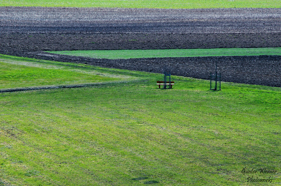 Photograph field in spring by Gunter Werner on 500px