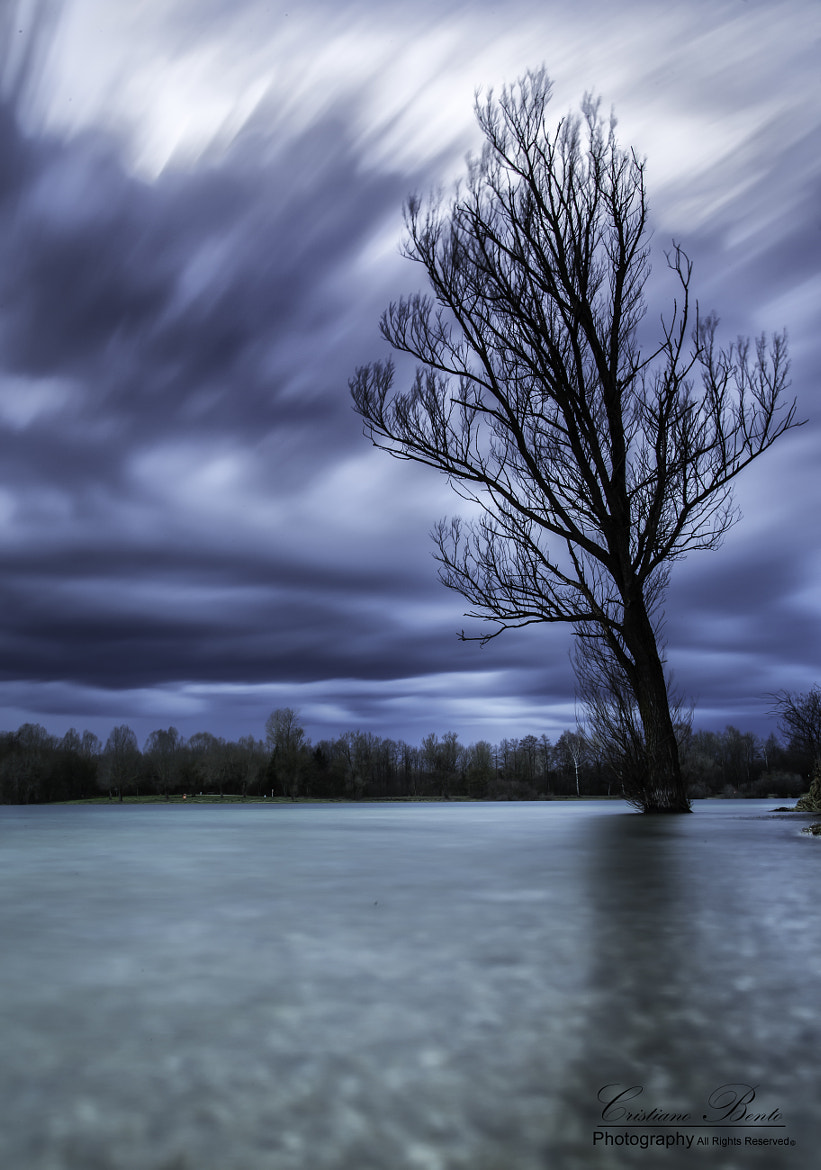 Photograph The Dark Place by Cristiano Bento on 500px
