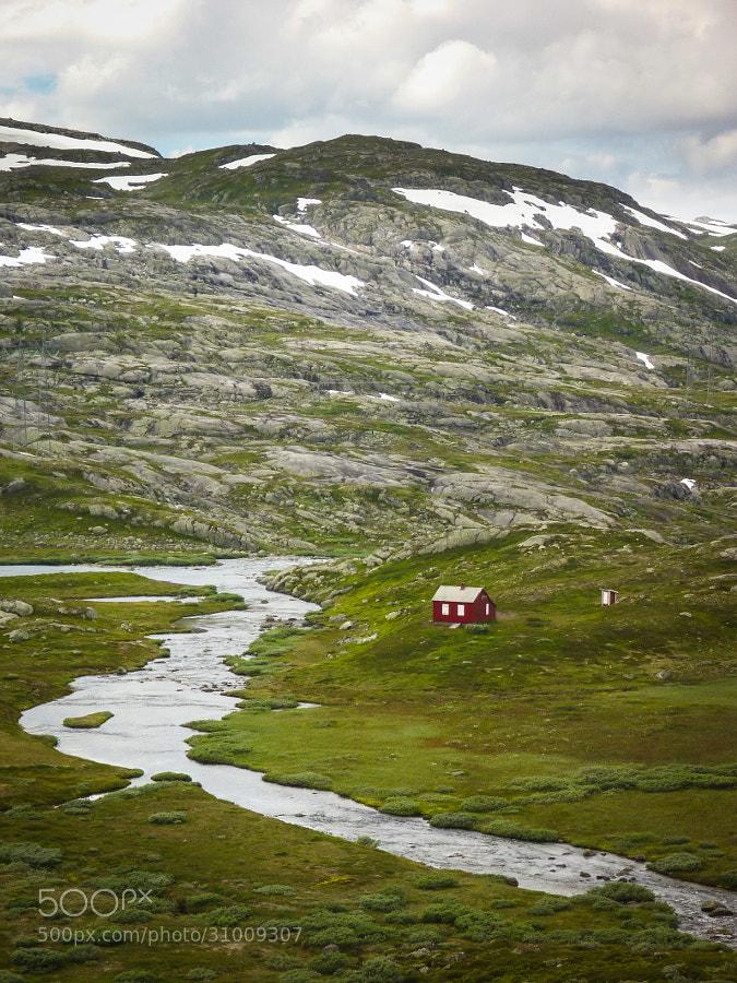 Rallarvegen, Summer 2012 by Eduardo Buccianti (FRUGiHOYi)) on 500px.com