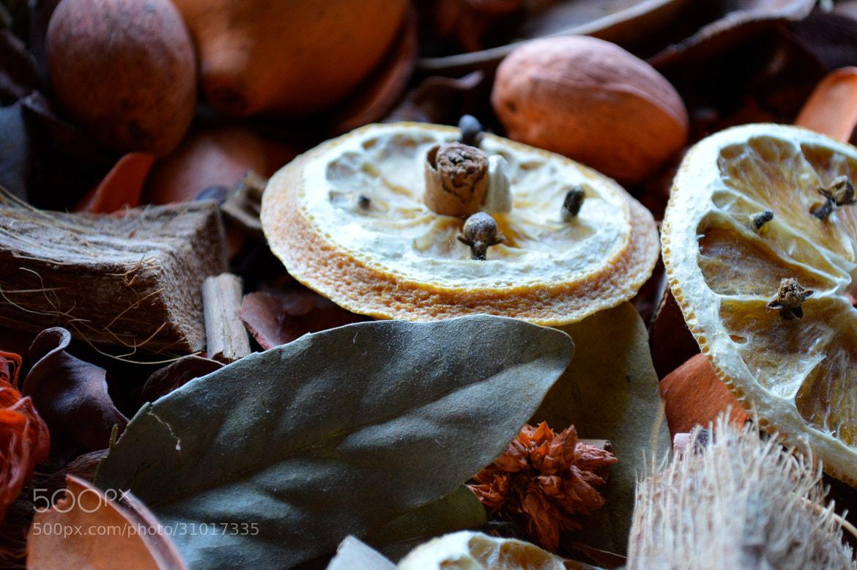 Photograph Chiodi di garofano e arance. by giorgiasanelli on 500px