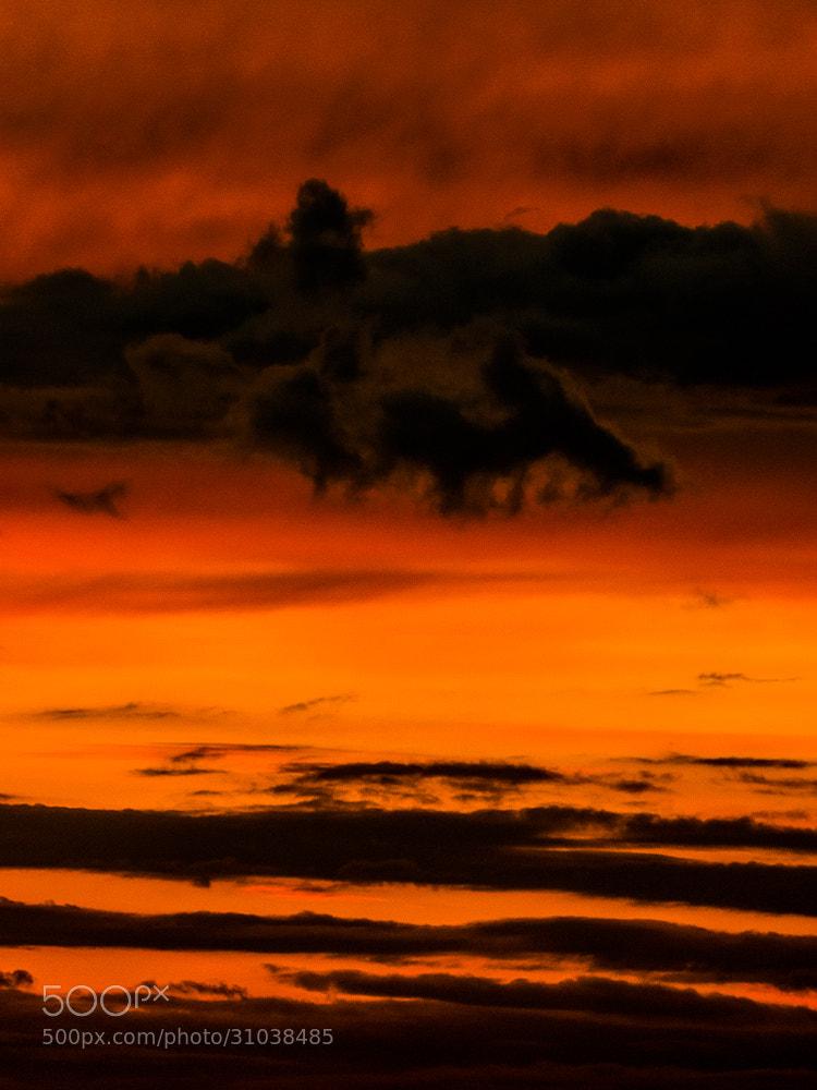 Photograph Firey sky. by Michal Jenčo on 500px