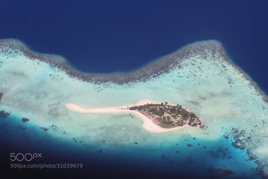 Photograph Shape of stingray by Mohamed Abdulla Shafeeg on 500px