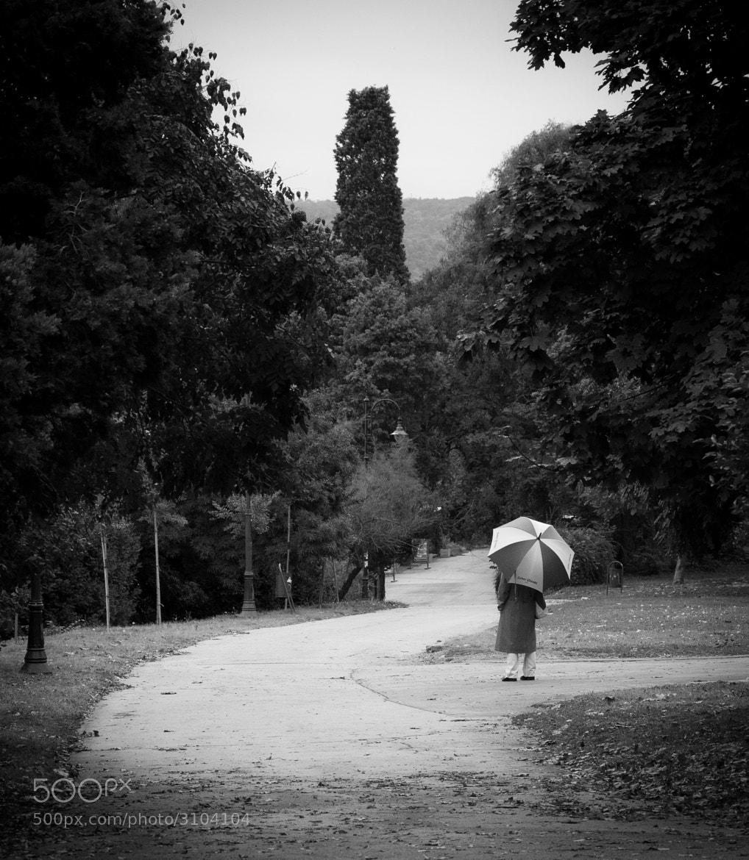Photograph umbrella by Anton Kolev on 500px