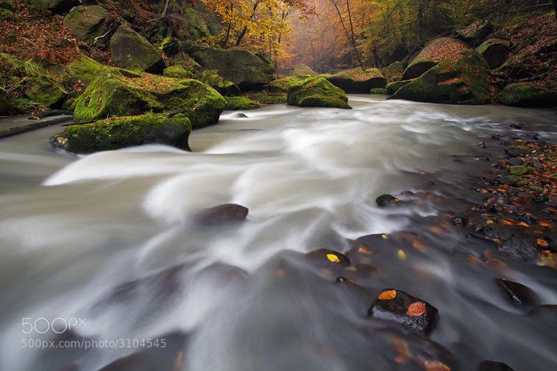 Photograph Stream by Martin Rak on 500px
