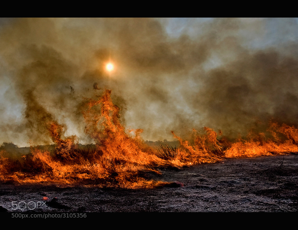Photograph fire*** by shlomi nissim on 500px