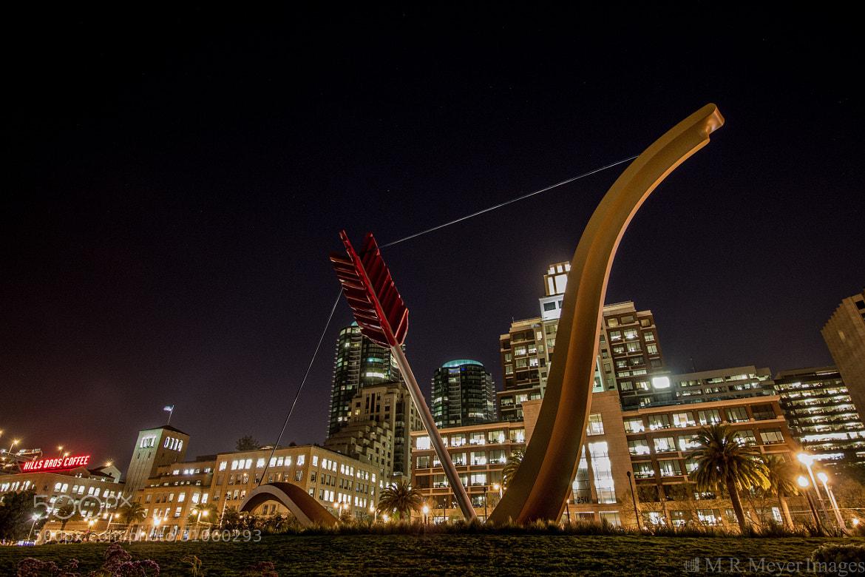 Photograph She Shot an Arrow Thru My Heart by Mark Meyer on 500px