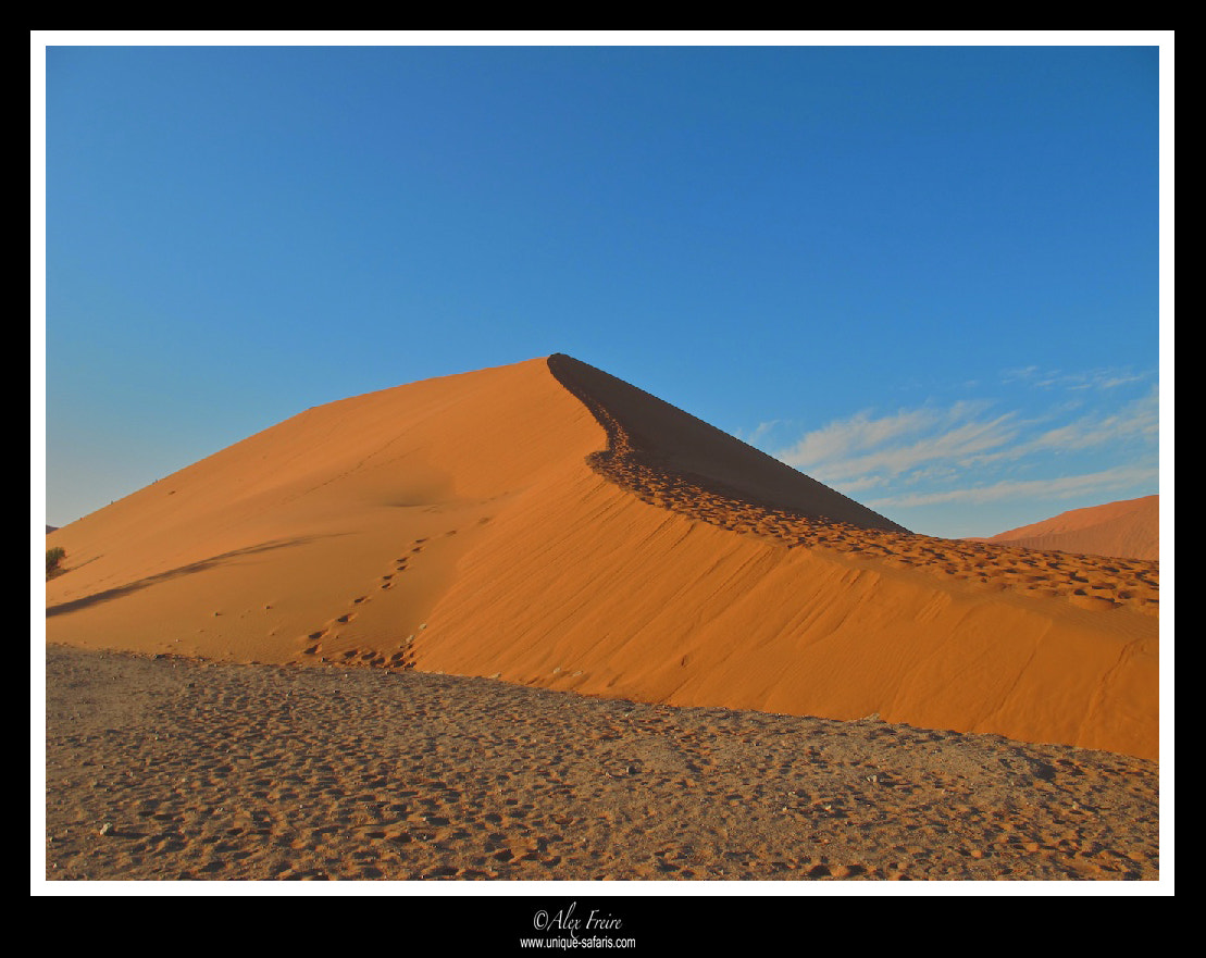 Photograph Dune 45 by Alex Freire on 500px