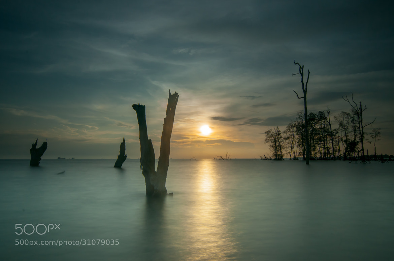 Photograph Sunset Series - Kelanang Beach, Banting by mradz radz on 500px