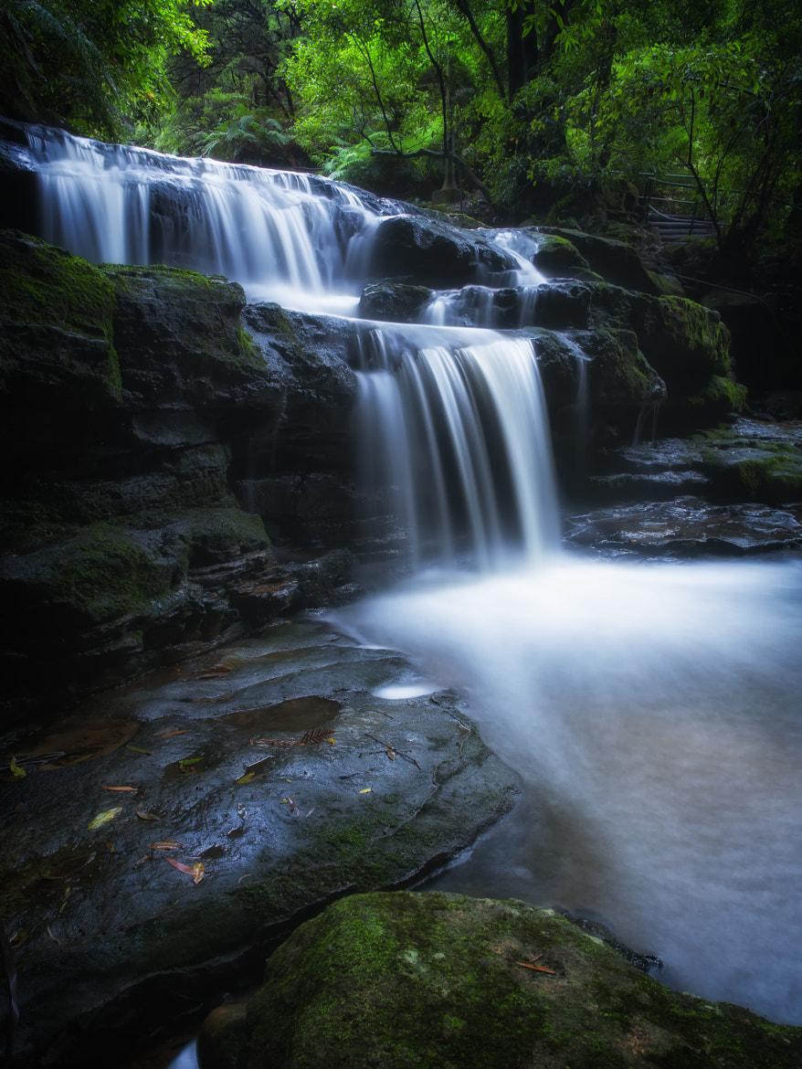 Photograph Leura Cascades NSW by PaulEmmingsPhotography  on 500px
