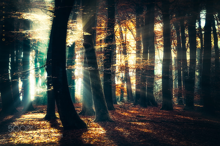 Battle of the Light by J-W v. E. (Oer-Wout)) on 500px.com