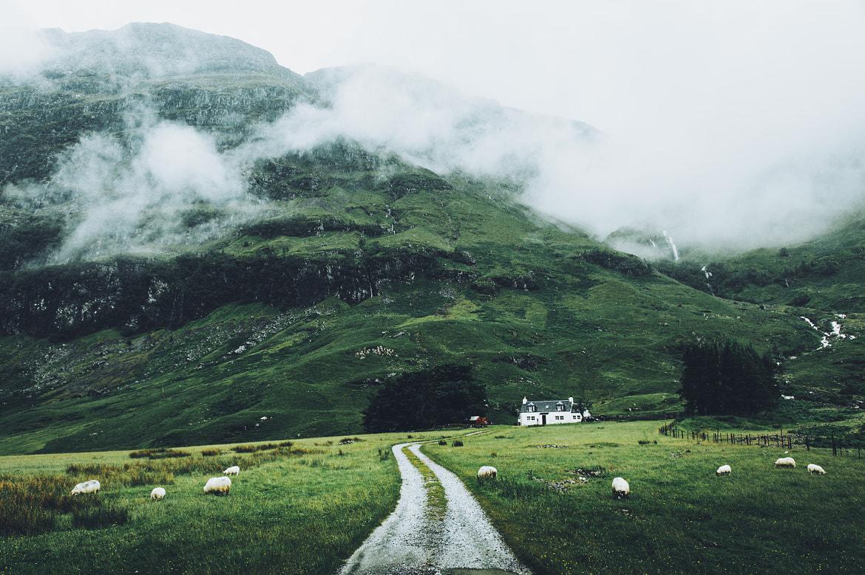 Scottish Mood