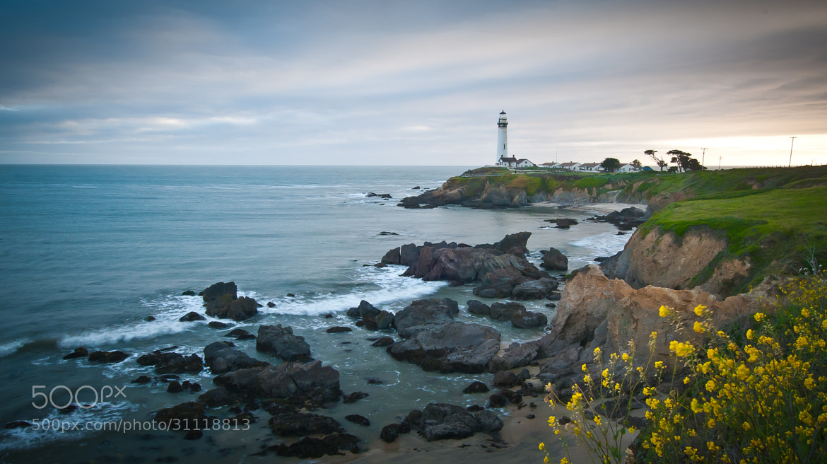 Photograph Pigeon Point Lighthouse by Michelle Lee on 500px