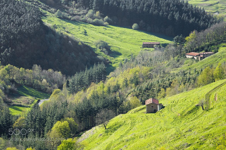 Photograph Lanzas Agudas en el valle de Carranza by Javier López Fabián on 500px