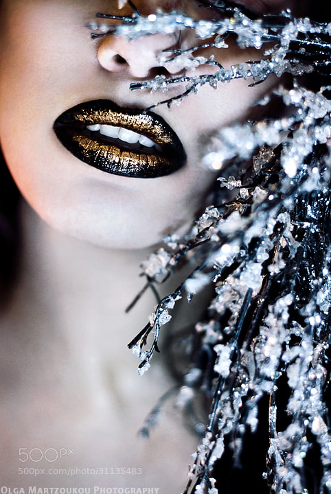 Photograph Winter by Olga Martzoukou on 500px