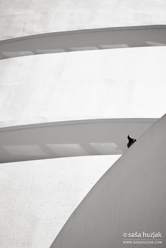 Photograph Guggenheim Museum #3 by Saša Huzjak on 500px