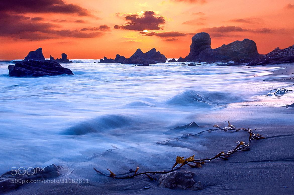 Photograph Washed Ashore by Christopher Riestajuana on 500px