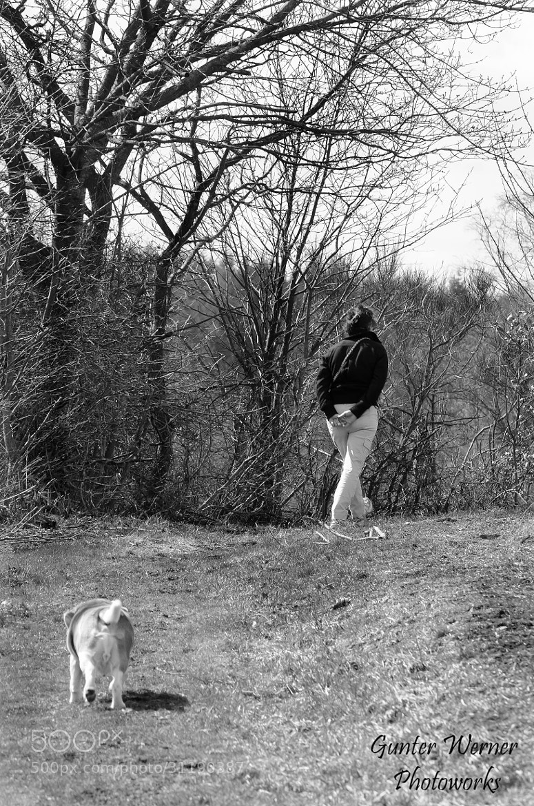 Photograph daily way with the dog by Gunter Werner on 500px