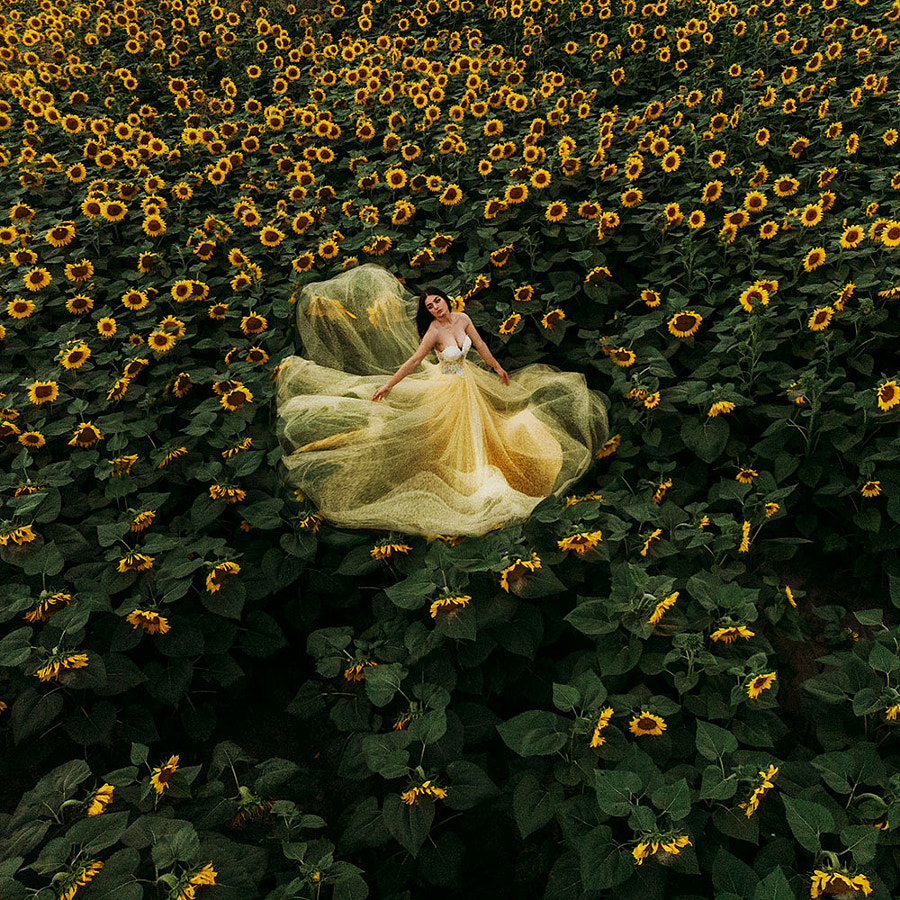 Sunflower Ocean by Jovana Rikalo on 500px.com
