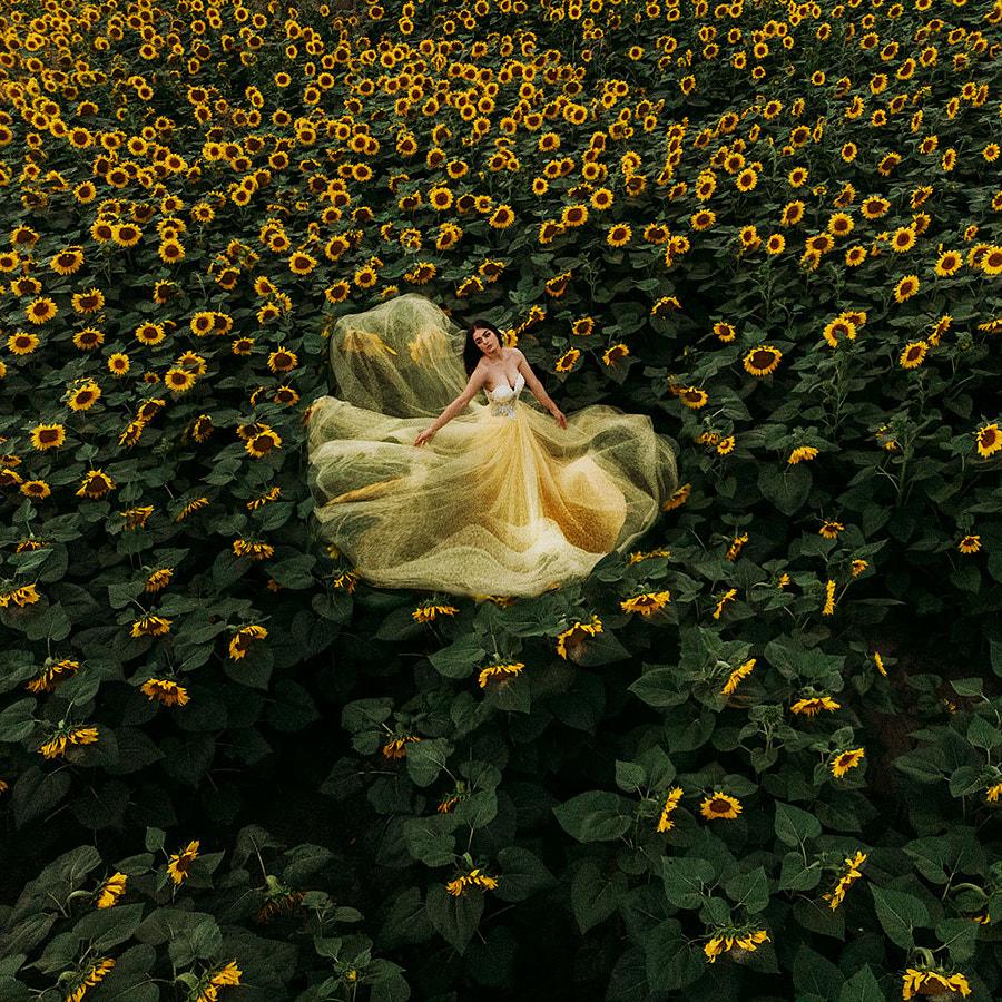 Sunflower Ocean by Jovana Rikalo on 500px.com