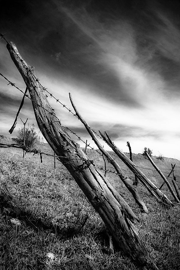 Photograph Old Fence by Fernando Salas on 500px