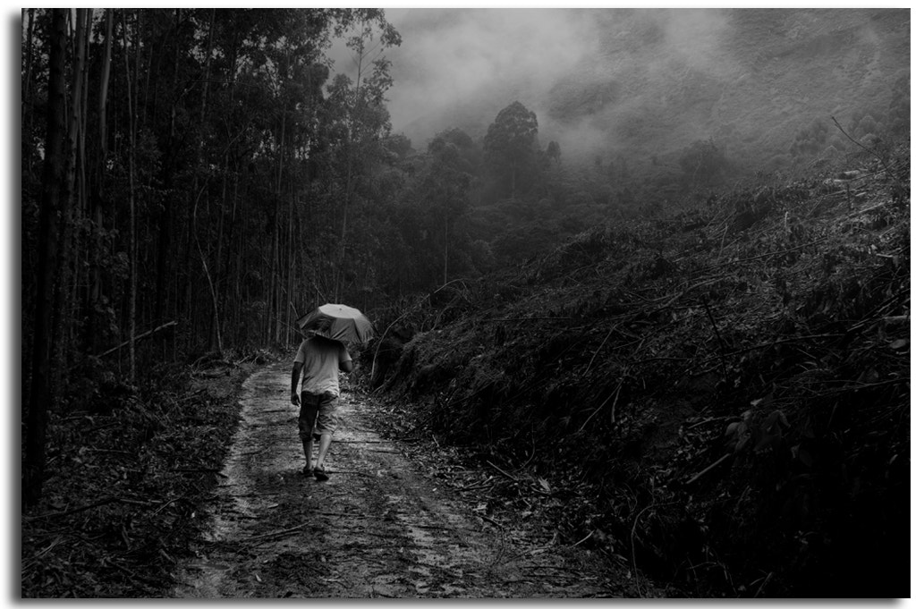 Photograph Drizzle by Rajarathinam Chakravarthy on 500px