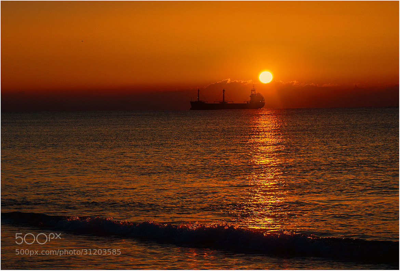 Photograph Golden silence by Stefano Crea on 500px