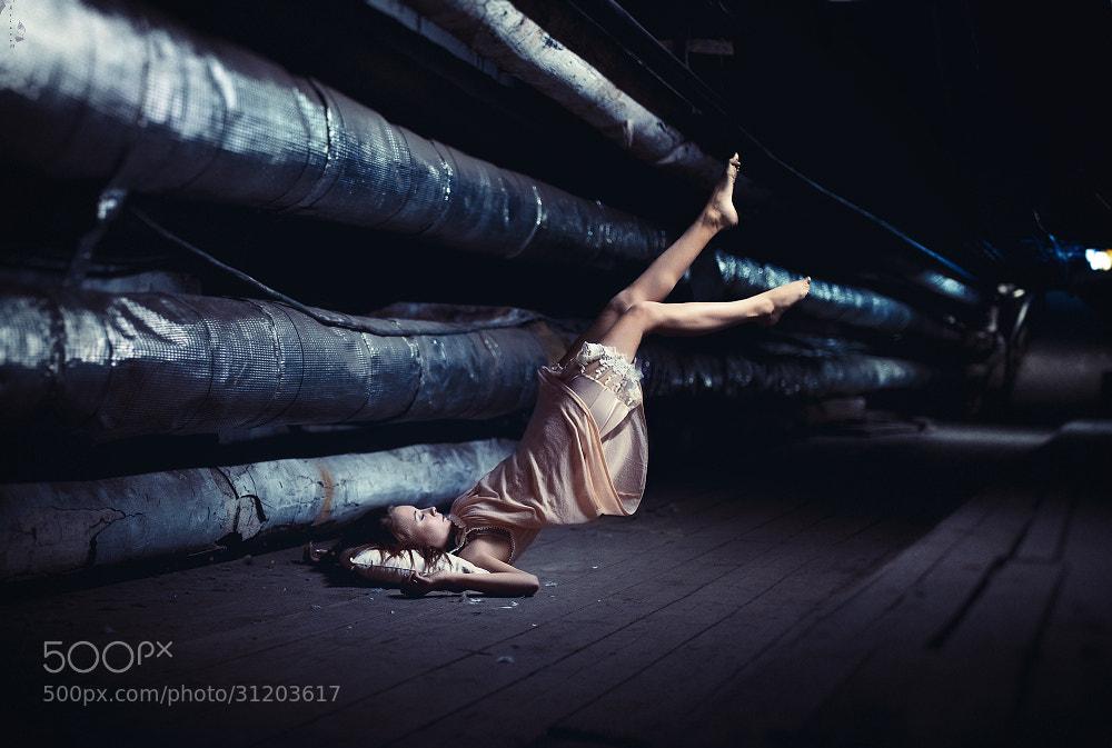 Photograph Untitled by Nikolay Tikhomirov on 500px