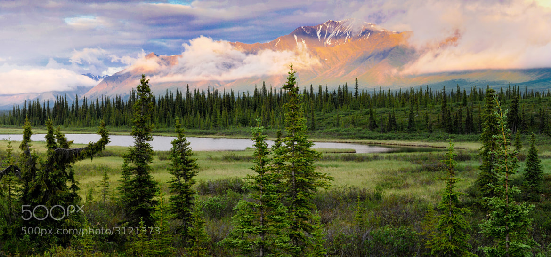 Photograph Alaskan Glow by Trevor Johnston / EyeMeetsWorld.com on 500px