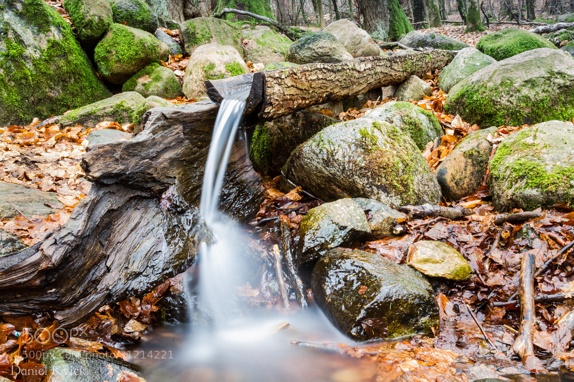 Photograph Log Water by Daniel Kvick on 500px