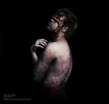 Photograph Rebirth by Scott Black on 500px