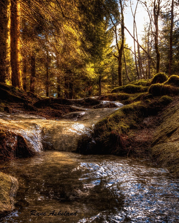 Photograph Light and shadow by Rune Askeland on 500px