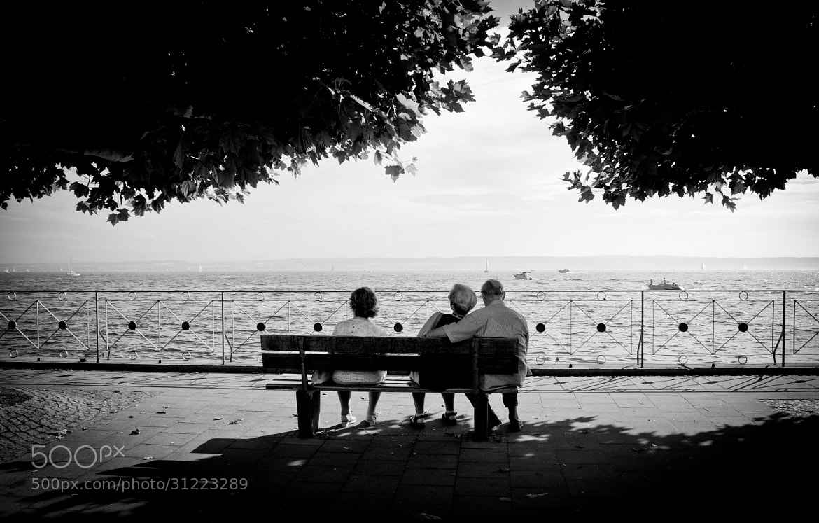 Photograph bench at the lake by Christian Schuster on 500px
