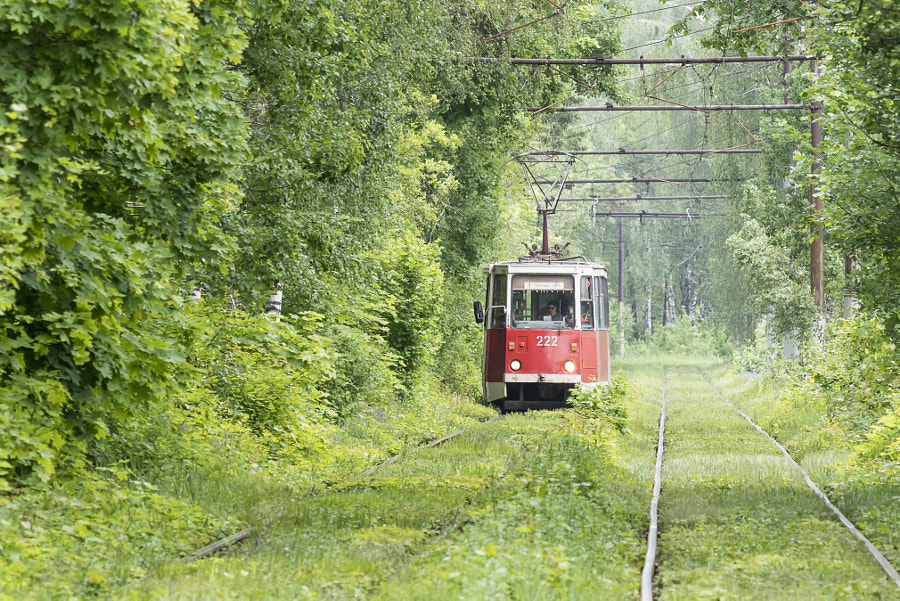 The tram by b282  on 500px.com