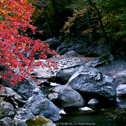 In Korea, the fall foliage peaks in late October...