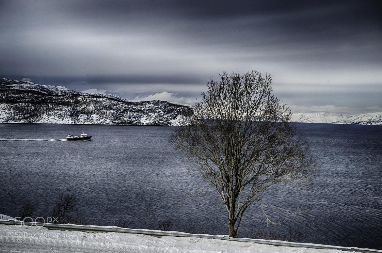 Photograph Untitled by Alain Barbezat on 500px