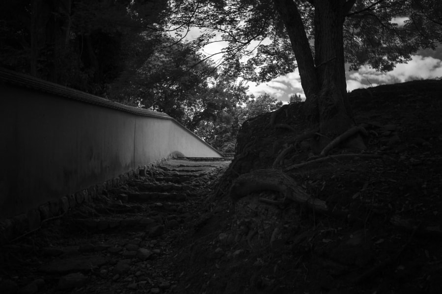 The old cobblestone stairs to the temple by Hiro .M on 500px.com