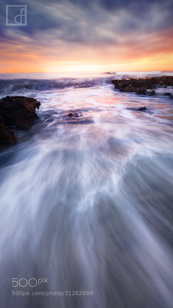 Photograph Walk into the Sunset by Dylan Fox on 500px