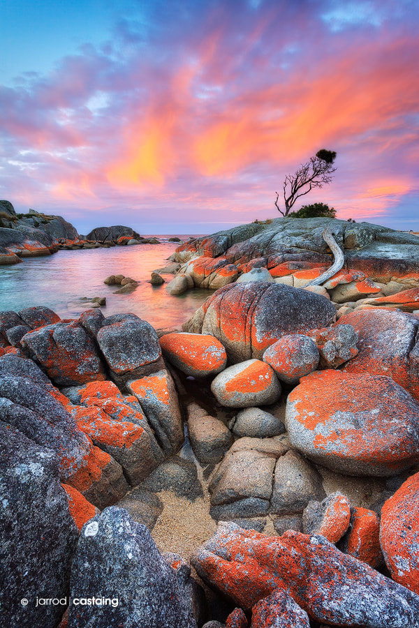 Photograph Bay of Fires by Jarrod Castaing on 500px