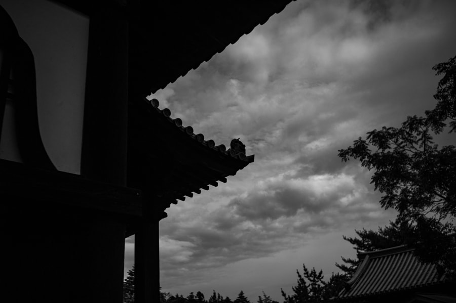 The silhouette of Todaiji-Kaidando by Hiro .M on 500px.com