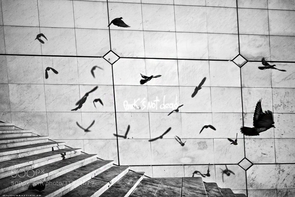 Photograph Entre rêves et réalités by Bastien HAJDUK on 500px