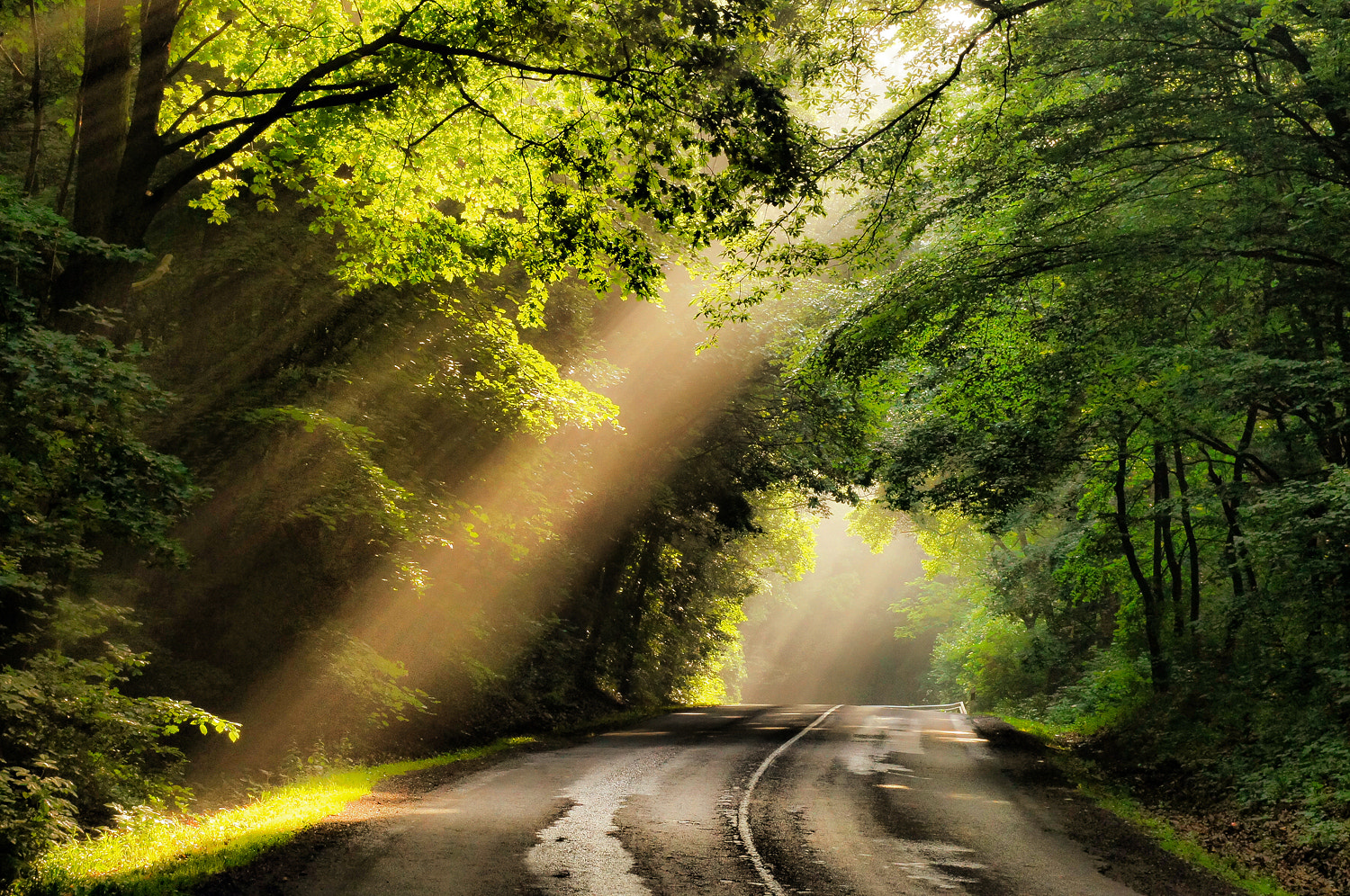 Photograph lights in on the road by Andy 58 on 500px