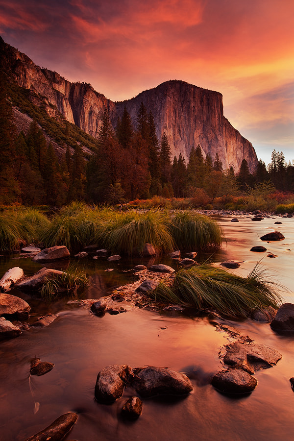 Photograph El Cap by Nicklaus Johnson on 500px