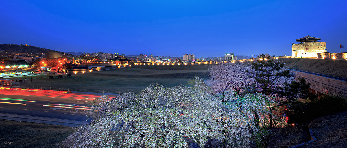 Photograph This is spring Suwon Hwasung by Eduardo choi on 500px